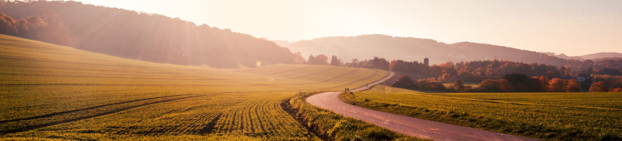 Straße_Sonnenuntergang_Urlaub